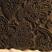 Vers les tampons pour l'impression des tissus en Inde: C'est une belle série en bon état. Les motifs sont sculptés dans la masse du bois. Cette technique millénaire est de nos jours toujours très répandue et populaire en Inde.